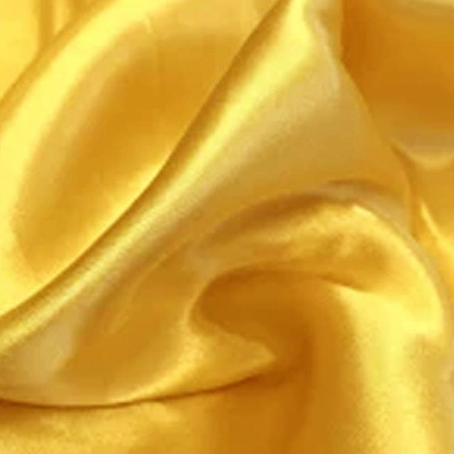 Where to find TBLC, SATIN MAIZE 8 FT TO FLOOR in Roanoke