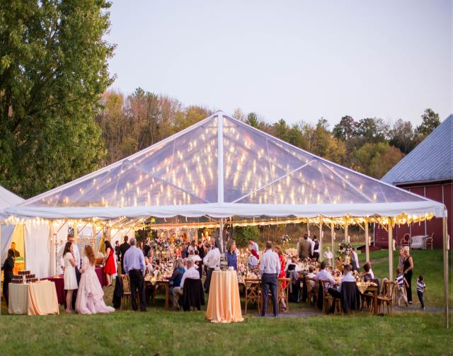 Where to find TENT, FRAME 40X100 CLEAR ULTRA in Roanoke
